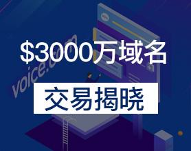 3000万美元域名交易揭晓